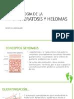 CLASE 31 FISIOPATOLOGIA DE LA HIPERQUERATOSIS Y HELOMAS