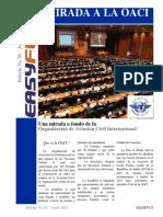 28. Boletin 28 - Jun -2012 Una mirada a la OACI