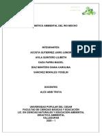 PROBLEMÁTICA final didactica ambiental
