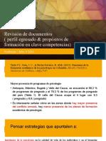 Revisión de documentos -Profesión