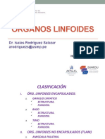 Organos Linfoides (A) (1).pptx
