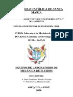 Milenka Pinto-Molerva .pdf