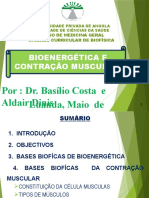 Bioenergética e contação muscular