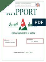 Rapport final HAO.docx