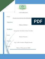 PLAN NACIONAL DE DESARROLO-ENSAYO-DIANA AMAGUAÑA (2)