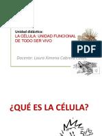 LA CELULA UNIDAD FUNCIONAL Y ESTRUCTURAL DE LOS SERES VIVOS.pptx