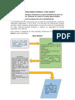 Diagrama de preparacion de biofertilizante 3