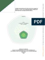13670056.pdf