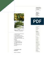 Cultivo del limón