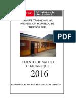 PLAN-DE-TRABAJO-DE-PCT-2016