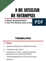 2 AULA DE BIOSSEGURANÇA hoje power.pdf