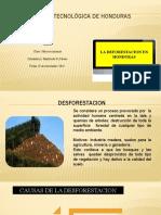 DEFORESTACION HONDURAS (2)