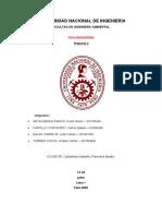 INFORME PREGUNTA 2.1.docx
