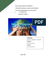 2 DERECHO INTERNACIONAL ANGELICA.docx