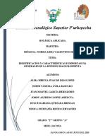 IDENTIFICACIÓN Y CARACTERÍSTICAS E IMPORTANCIA GENERALES DE LA DIVISIÓN MAGNOLIOPHYTA