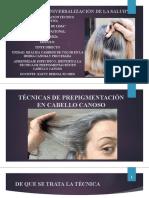 CLASE N°13 ONLINE- TÉCNICA DE PREPIGMENTACIÓN EN CABELLO CANOSO - 14-07-20