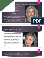 CLASE N°12 ONLINE- PORCENTAJE DE CANAS  - 13-07-20