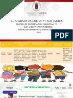 Elsa socialización I-2019.pdf