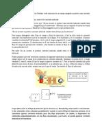 Relacion entre la induccion de faraday y y la fuerza magnetica