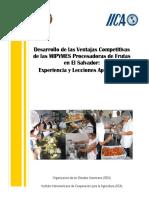 Informe Sistematizacion Proyecto Oea Iica Mipyme 18 Junio 2009