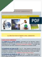 LA PROTECCION JURIDICA DEL AMBIENTE