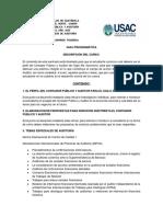 Guia Programatica Seminario de Casos de Auditoría 2020.pdf