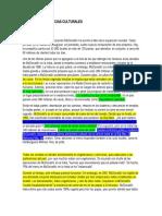 NEGOCIOS INTERNACIONALES CAPITULO 3 DIFERENCIAS CULTURALES