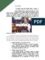 Alejandro Cortés García - Farmacología Nutrición y Dietética -Trabajo Alcoholismo