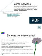 9_sistema nervioso.pps