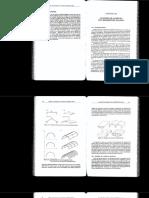Capitulo 10 - Analisis de Laminas con Elementos Planos