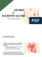 CRIPTORQUIDIA Y ESCROTO AGUDO .pptx