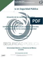 Analisis_del_caso_Tlahuac.pdf