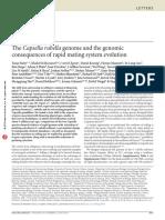 Slotte 2013 NatG the Capsella Rubella Genome and the Genomic Conseq of Rapid Mating System Evol