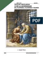 EPÍSTOLAS CARCELARIA1.pdf
