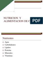012-NUTRICION Y ALIMENTACIÓN DE CERDOS