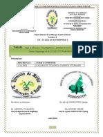 rapport stage académique d'imprégnation 1.pdf