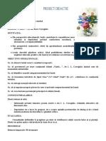 Proiect ERR Vizita_de_i.l.caragiale
