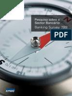 Mozambique bank survey 2009