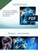 kinesiologia TFH