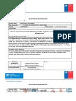 REGISTRO DE INTERVENCIÓN VARIAS JUNIO.docx