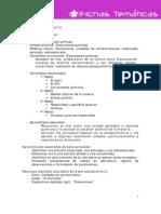P0001 File Guia Para El Docente Soluciones