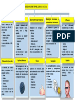ENFERMEDADES PREVENIBLES POR VACUNAS.pdf