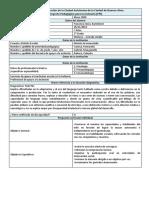 Formato PPI .docx