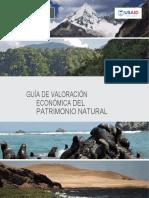 GUIA DE VALORACION ECONOMICA-converted (1)