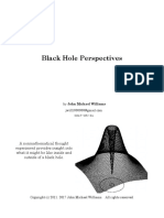 Black Hole Perspectives
