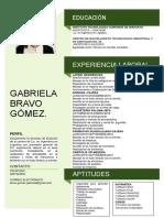 CV Gabriela Bravo Gómez.pdf