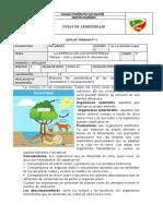 NATURALES QUINTOS 2P guia 4