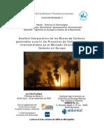 Memoria_Carbono.pdf