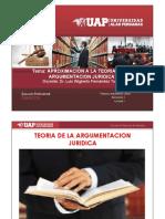 Litigacion 1.pdf