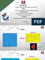 Jose_Aviles_Reporte_Practica_Educación..pptx